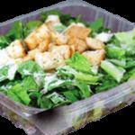 Classic Caesar Salads Pizza 911